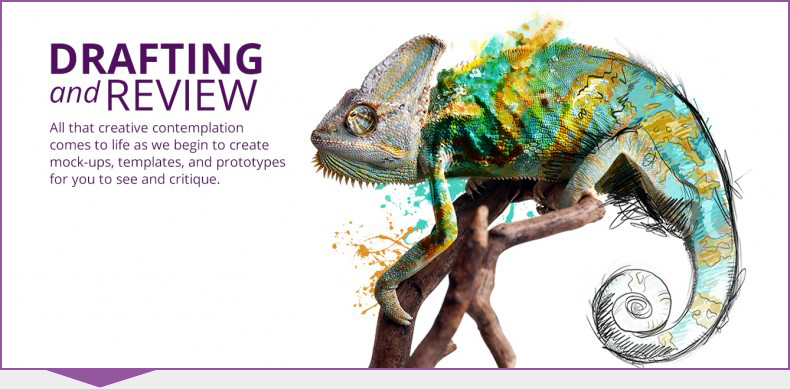 Kihada Chameleon Design Step 4